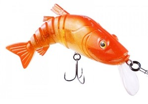Plus nouveaux vidéos sur la pêche
